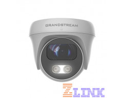 Grandstream GSC3610 Dome IP Security Camera